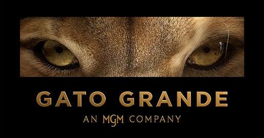 Gato Grande logo